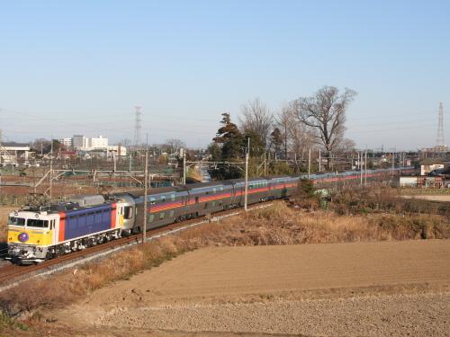 Imgp2008012701