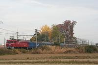 P2008112401