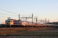 P2009020811