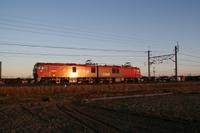 P2009020812