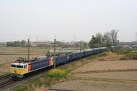 P2009041202