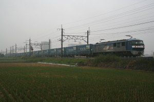 P2009100501