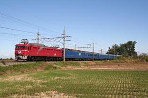 P2009101202