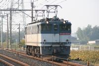 P2009101903