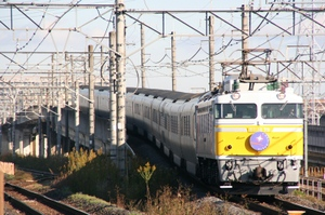 P2009111809