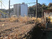 Img_2012011520